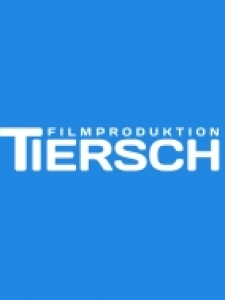 Profilbild von Norman Tiersch Cutter/Kameramann/Animation aus Koeln
