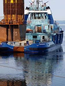 Profilbild von Peter Nibbe Schweissfachingenieur, Schweissnahtprüfungen, Schiffbau, Industrie, Offshore aus Hamburg