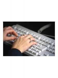 Profileimage by Violet Tavares Expert Computer cum Data Entry Operator from MapusaGoa